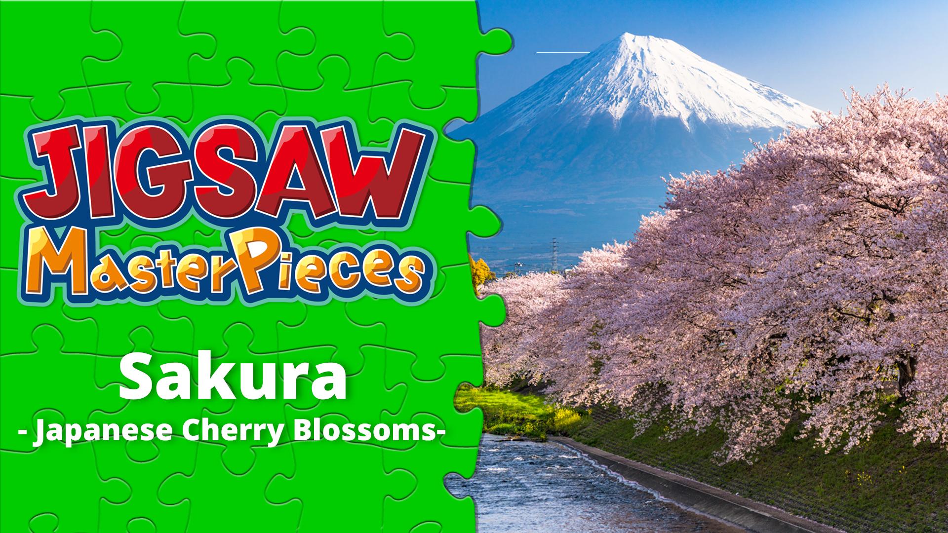 Sakura - Japanese Cherry Blossoms -