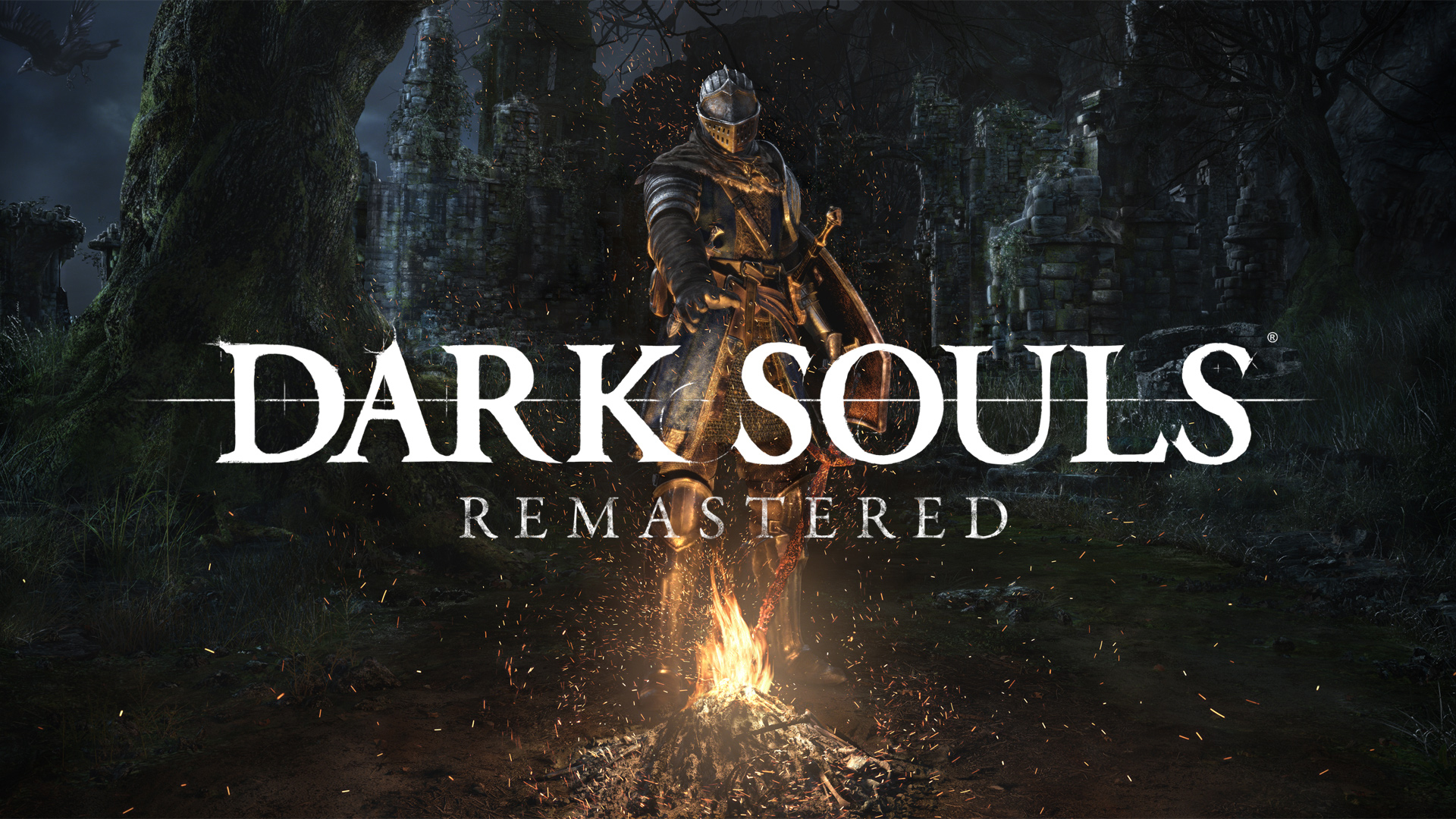 Nintendo switchdark souls remastered nintendo switch dark souls remastered voltagebd Images
